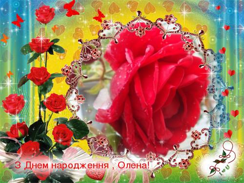 Трояндами цвітуть літа прекрасні