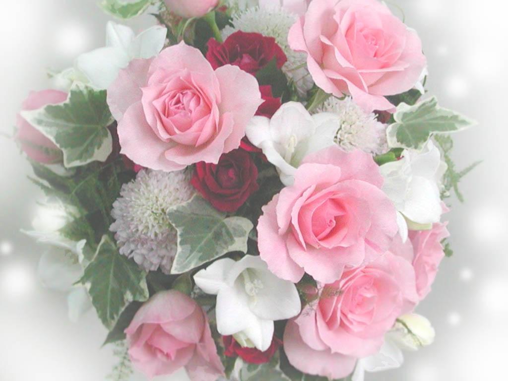 Вітаємо з днем народження Світлану (LANA), 18 травня у Свiлани ...