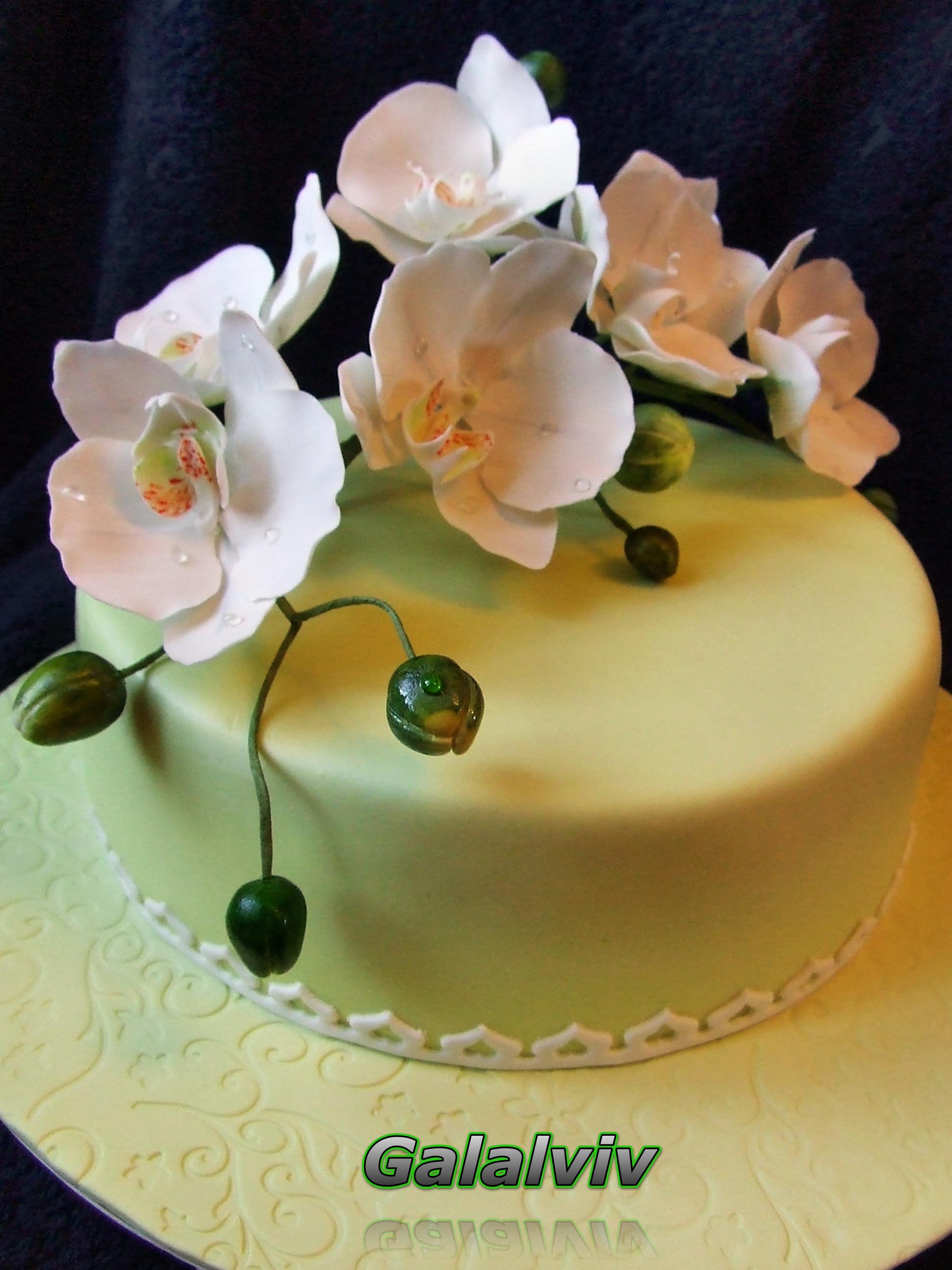 Как сделать орхидей для торта
