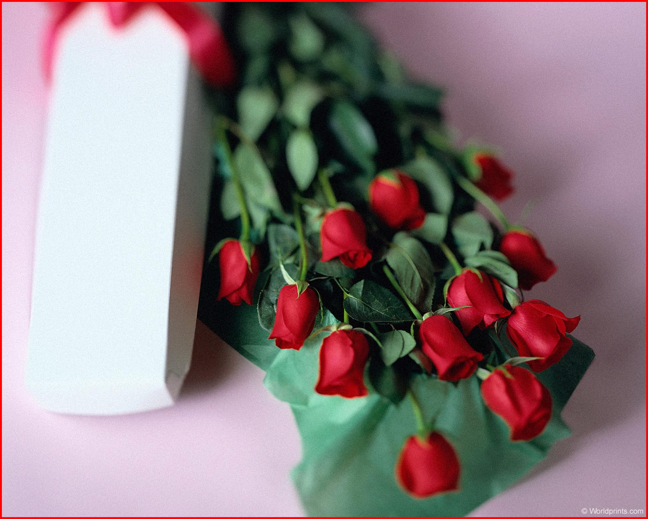 Цветочек фото в подарок